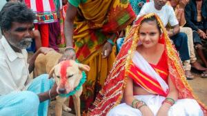 Организация Свадеб в Разных Странах Мира. Самые Безумные Свадебные Традиции